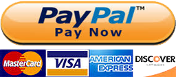 Buy Auto Parts Via PayPal